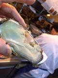 2月限定!!「牡蠣&白子の海ニッツォ!」